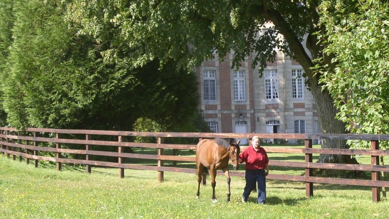 Yearling prep takes place at the picturesque Haras de Gouffern