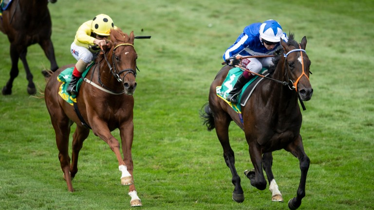 Mystery Power (right): won the Superlative Stakes at Newmarket