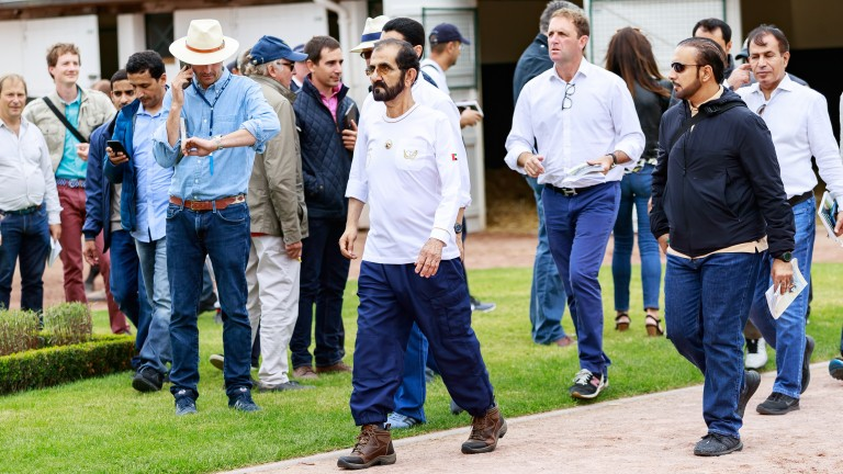 Sheikh Mohammed and his entourage on the Arqana sales ground