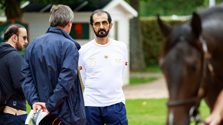 Sheikh Mohammed and Simon Crisford in discussion whilst inspecting a yearling