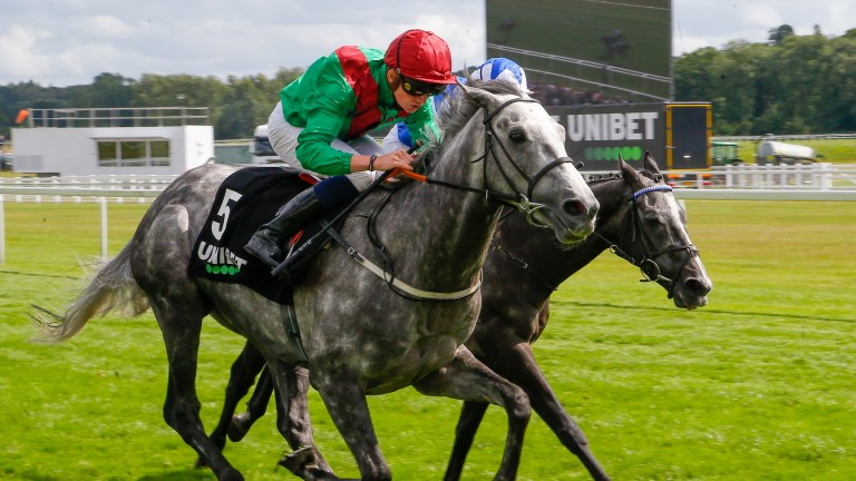 Technician: the Group 3 winner is still on course for the St Leger