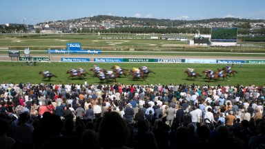 17 runners in the Grand Hadicap des Sprinters stream past the crowd.Deauville.Photo: Patrick McCann/Racing Post 18.08.2019