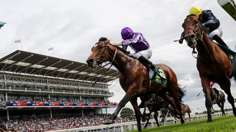 JAPAN and Ryan Moore win the SJuddmonte International Stakes  at York  21/8/19Photograph by Grossick Racing Photography