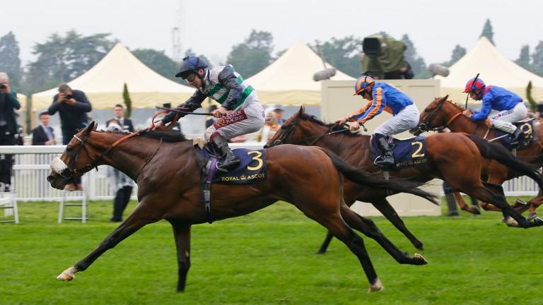 Dashing Willoughby won the Queen's Vase under Oisin Murphy
