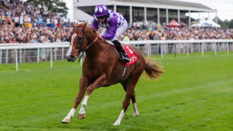 Mums Tipple: put in an exceptional performance at York on Thursday
