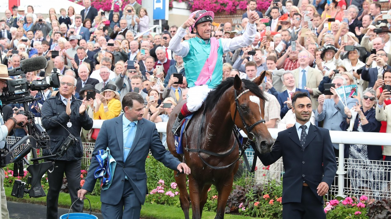 A dream come true for Enable groom as wondermare lands tenth Group 1 success