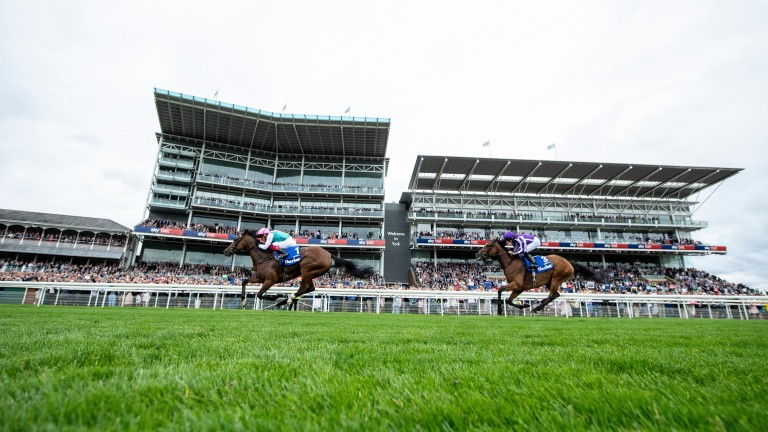 Enable ends the week as unofficially the highest-rated horse in the world thanks to her Yorkshire Oaks success