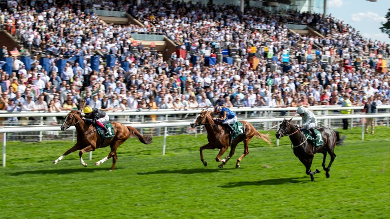 Il Paradiso (centre): tries to reel in Stradivarius in the Lonsdale Cup at York with Dee Ex Bee to his outside