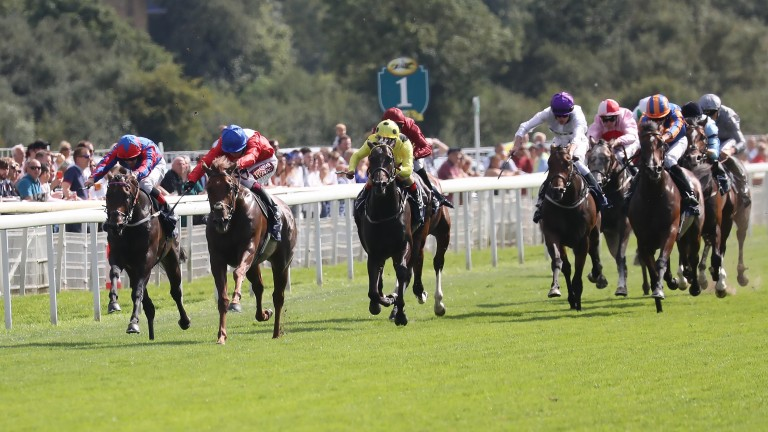 Threat (red silks and blue cap) lands the Gimcrack Stakes at York