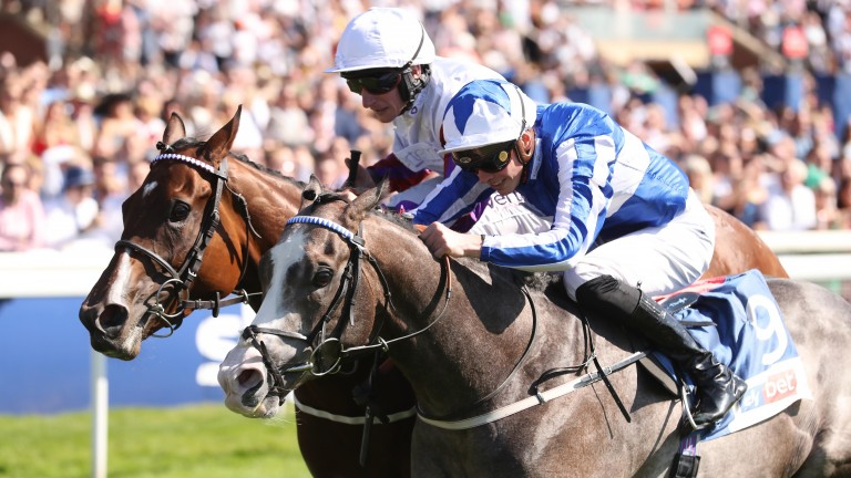 Shine So Bright just edges out Laurens in the City of Wall Stakes