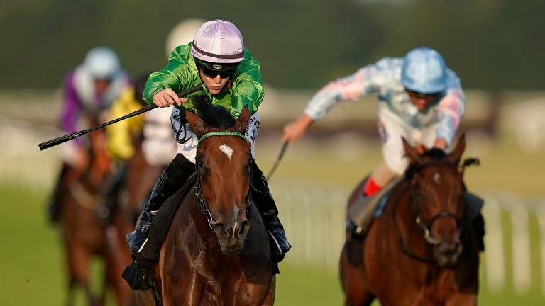 Boomer (green silks) won the Prestige Stakes at Goodwood last August