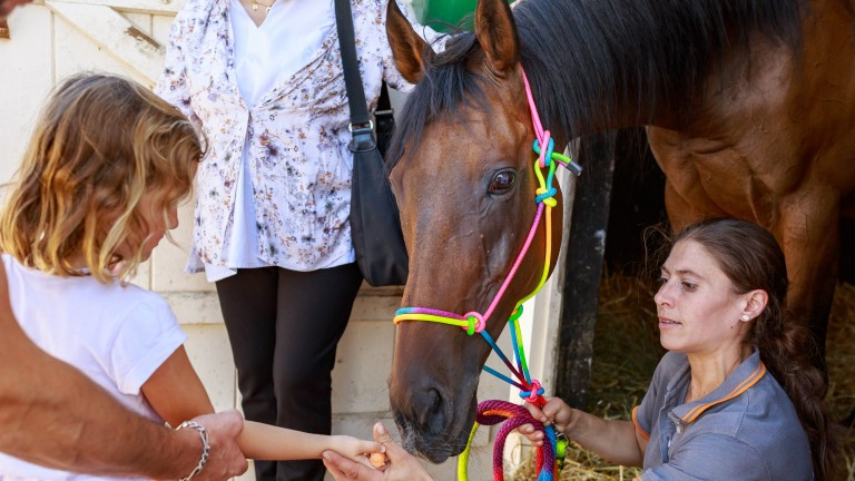 Meet your heroes: A young fan with Cirrus Des Aigles and groom Zoe Gargoulaud