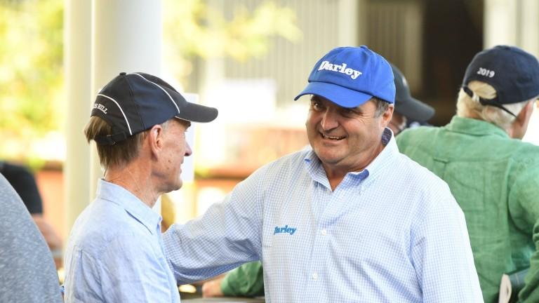 Godolphin Australia managing director Vin Cox