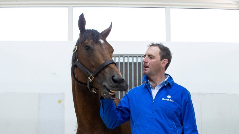 Quorto pictured in Dubai with Charlie Appleby, who is eyeing up the top mile events in 2020 for his unbeaten star