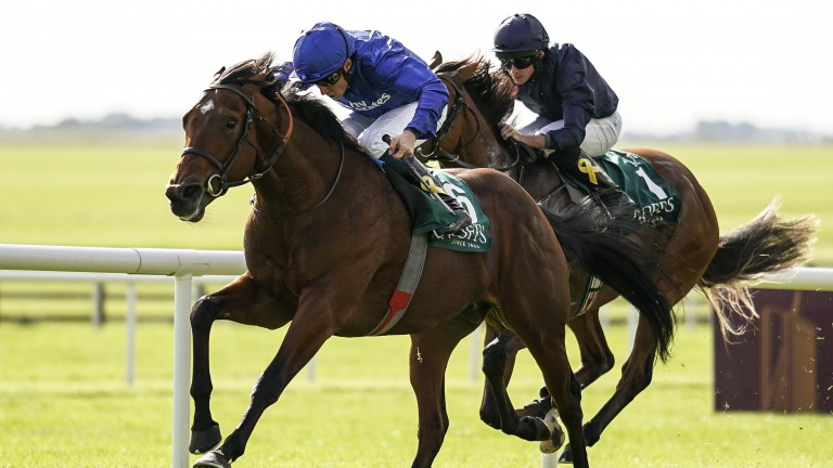 Quorto wins last year's National Stakes from Derby hero Anthony Van Dyck