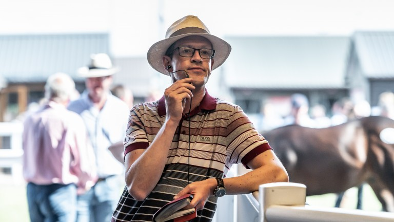 Bloodstock agent Matt Coleman surveys the scene inside the Goffs UK sales ring