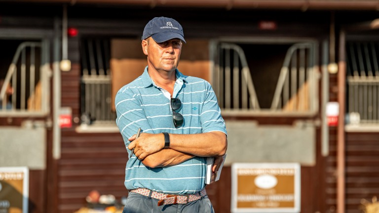 Ed Dunlop deep in concentration inspecting a yearling