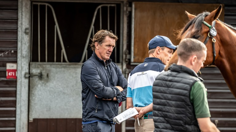 Legendary jump jockey AP McCoy was among those inspecting yearlings in Doncaster