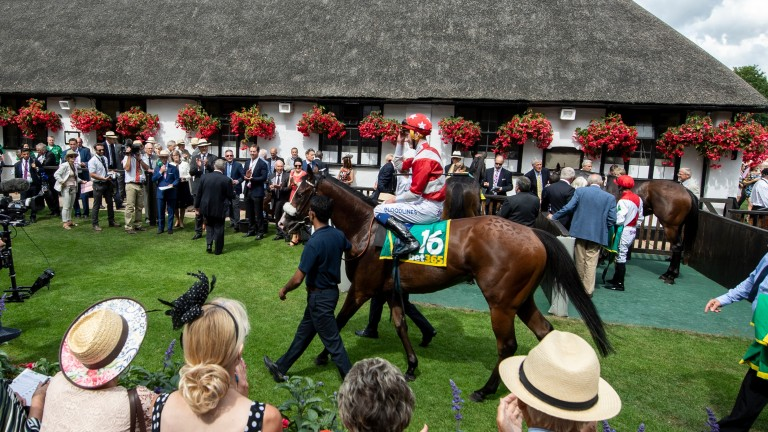 Pass The Vino after winning at the Newmarket July meeting