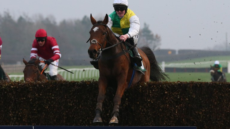 Cloth Cap: could be a Grand National contender this season