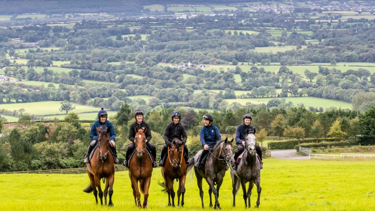 Ruby Walsh, AP McCoy, Paul Carberry, Charlie Swan and Joseph O'Brien warming up for the Pat Smullen Champions Race for Cancer Trials Ireland at O'Brien's Owning Hill base on Tuesday