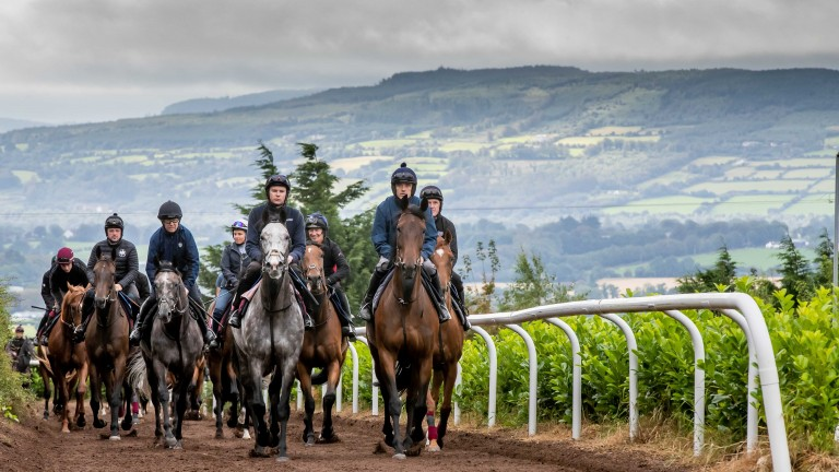Five of the legendary riders involved in next weekend's Pat Smullen Champions Race for Cancer Trials Ireland led the string at Joseph O'Brien's Owning Hill gallop on Tuesday morning