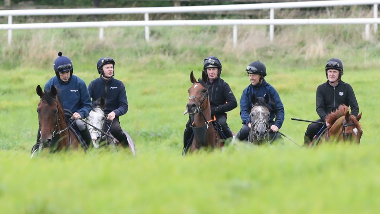The legendary quintet on the famous gallops of Owning Hill