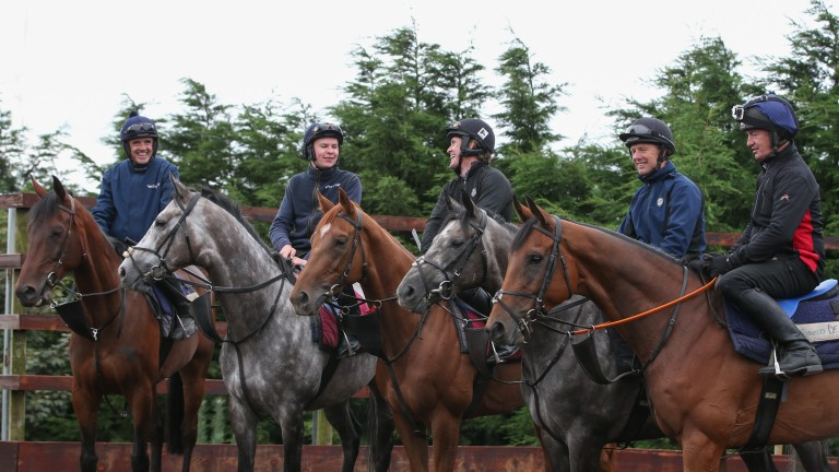 Walsh, O'Brien, McCoy, Swan and Carberry take a well-earned rest
