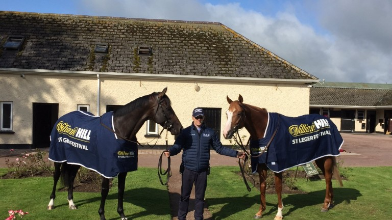 Aidan O'Brien poses with St Leger candidates Sir Dragonet (left) and Il Paradiso