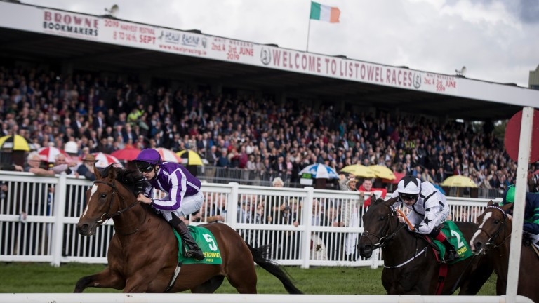 Japan opened his account at Listowel last year before developing into a Group 1 performer