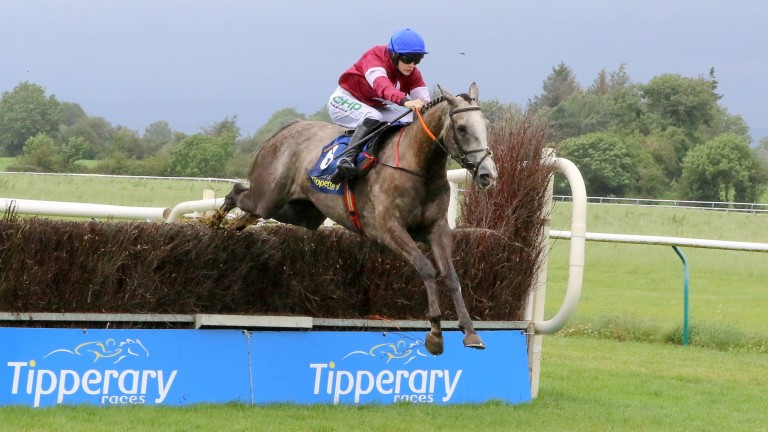 Jan Maat impressed when getting off the mark over fences at Tipperary