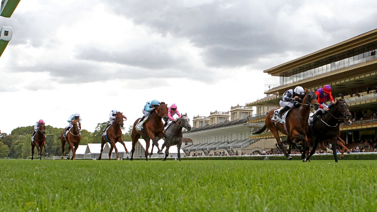 Romanised connections to appeal after Circus Maximus