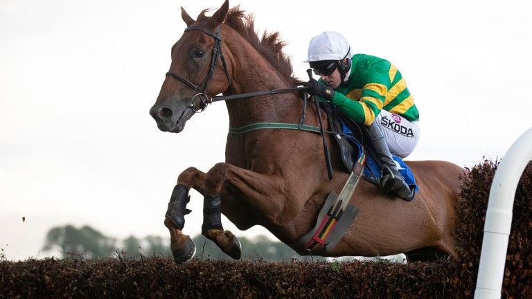 Movewiththetimes: on his way to winning at Killarney last month under Mark Walsh