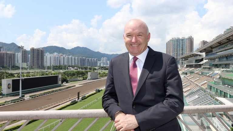 David Hayes: back training in Hong Kong and successful at Sha Tin on Sunday