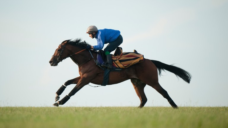 """Cecil on Frankel: """"He is quite a complicated person and I have got to know him very well"""""""