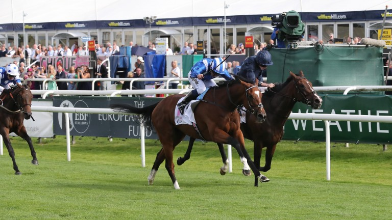 Enbihaar (blue): rewarded favourite backers by landing the Park Hill Stakes