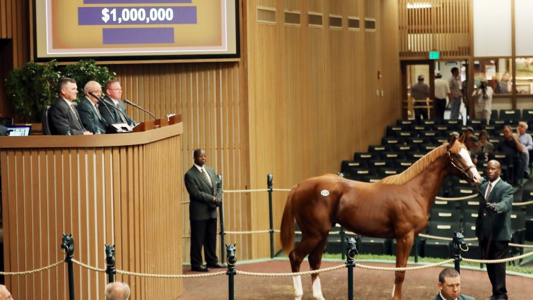 Bidding at Keeneland went into seven figures again at Book 2 for a Union Rags colt