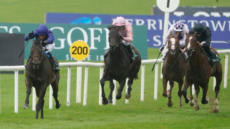 Pinatubo bursts clear of his rivals in the National Stakes at the Curragh