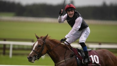 Chris Hayes celebrates winning the Irish St Leger on Search For A Song