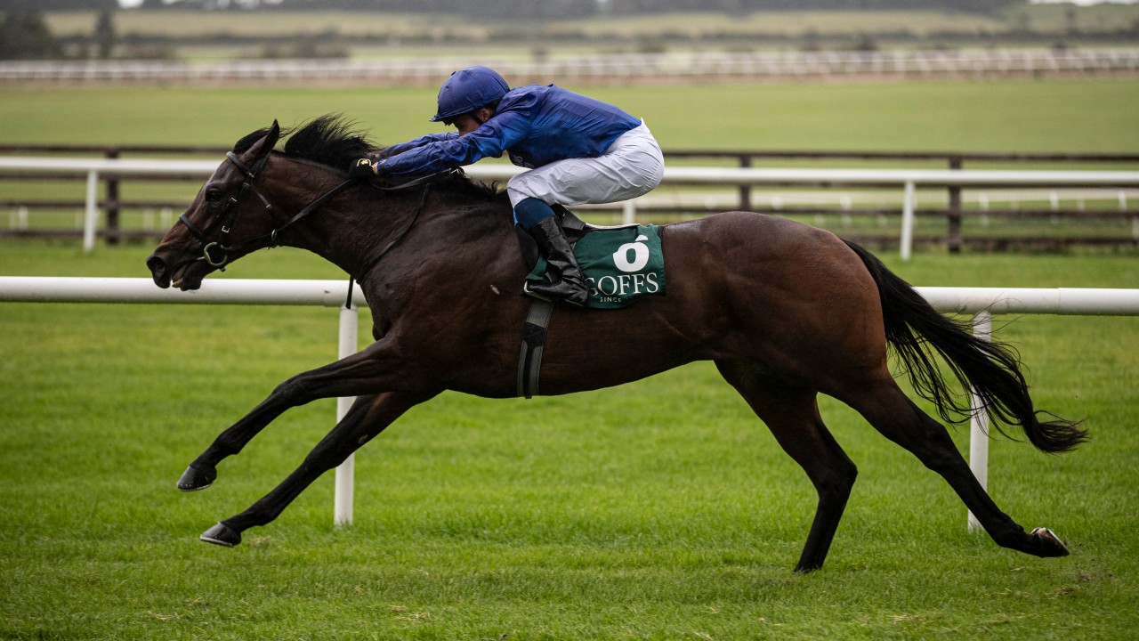 'Special' colt Pinatubo sparks happy memories of Celtic Swing