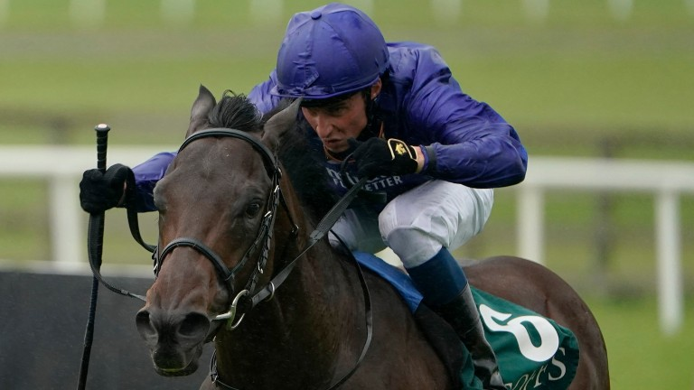 Pinatubo: destroyed his National Stakes rivals by nine lengths