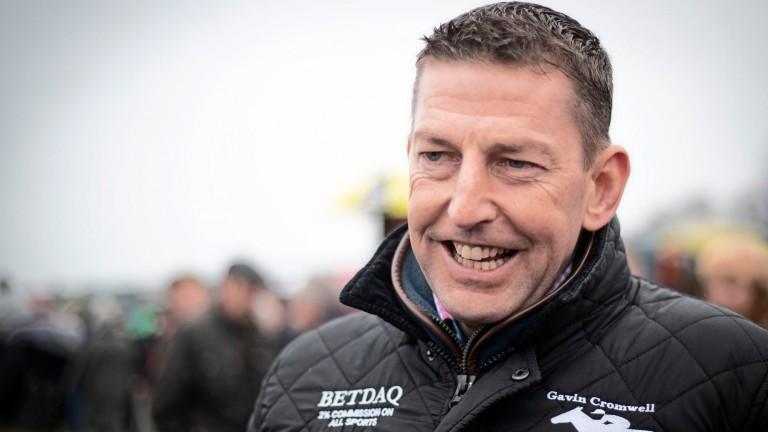 Gavin Cromwell: has already bettered last season's tally of winners
