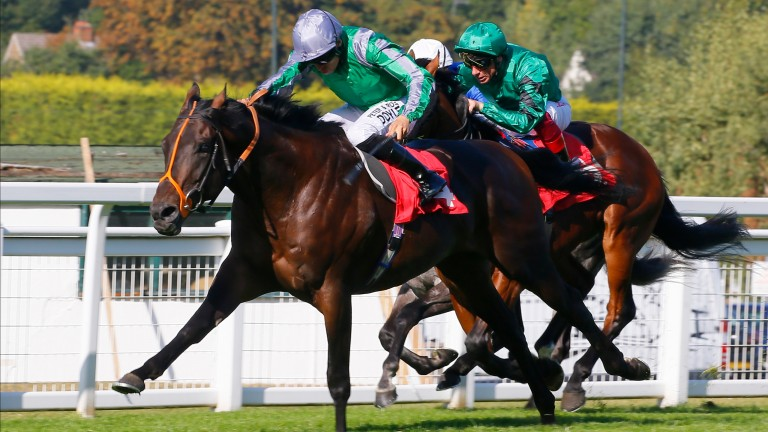 Turgenev (rear) finished behind King Of Change at Sandown on his last start