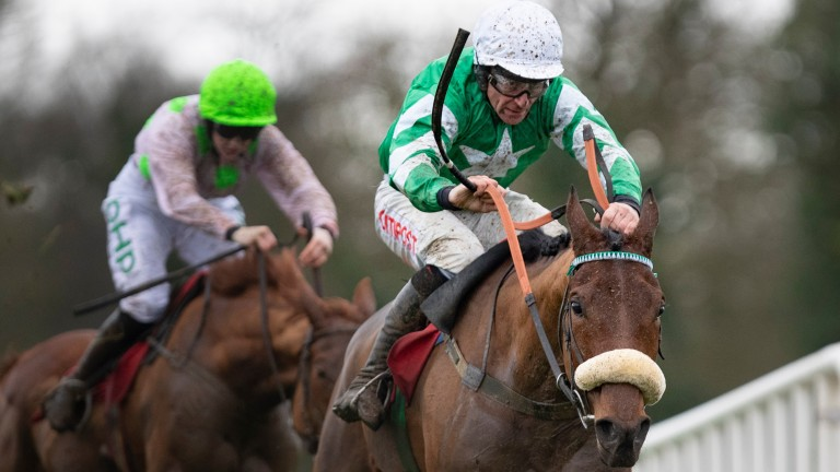 Presenting Percy: on course for the Savills Chase at Leopardstown