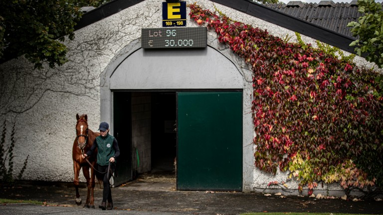 Tattersalls Ireland will not be able to open its doors in April