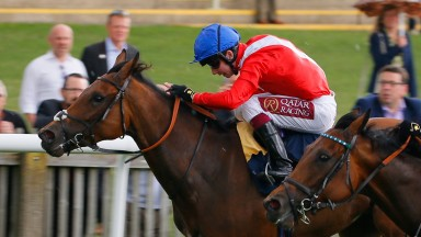 Veracious: has done well since her Falmouth Stakes triumph in July