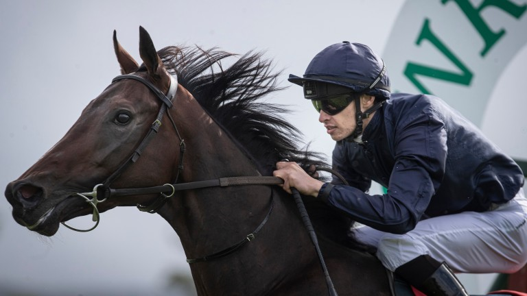 Mythical: set to make his first start for Joseph O'Brien on Sunday