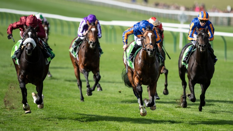 Royal Dornoch (blue cap, centre) beat subsequent 2,000 Guineas hero Kameko in last year's Royal Lodge