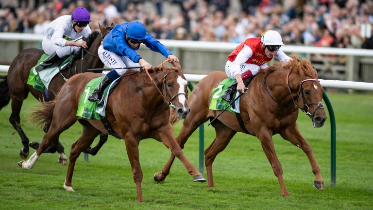 Ready for round three: Earthlight (blue silks) leads 2-0 in meetings with Golden Horde but had only a neck in hand when the pair met in the Middle Park at Newmarket last September