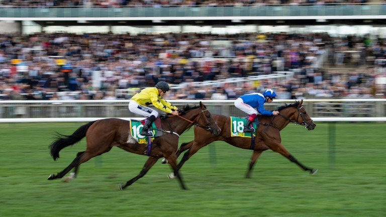 Lord North (Frankie Dettori) wins the Cambridgeshire from BeringerNewmarket 28.9.19 Pic: Edward Whitaker